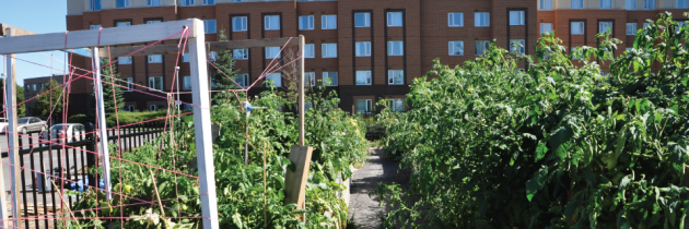 Membership Advisory regarding the relocation of the GSA Community Garden