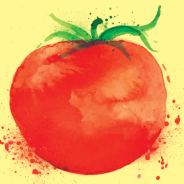 Tomato Preservation Workshop